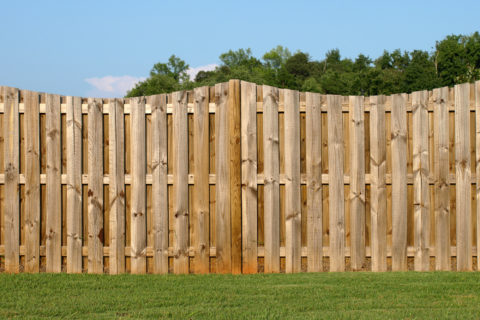 vinyl or wood fence
