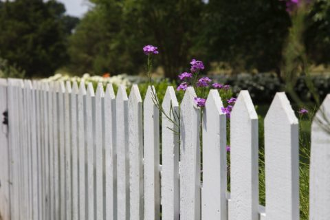fence ideas gainesville